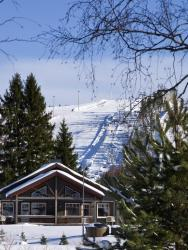 Himoshovi Cottages, Himoslaaksonraitti 3, 42100, Jämsä