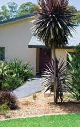 Parker by the Sea, 34 Parker Ave, Surf Beach, 2536, Batemans Bay