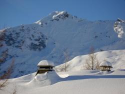 Résidence Les Terrasses du Mont-Blanc, Les Terrasses du Mont Blanc, 74440, Le Praz de Lys