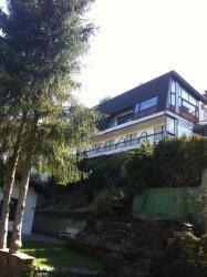 Haus Carmenas, Hasensprung 27, 64757, Rothenberg