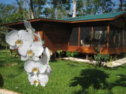 Casitas Calinas, PO Box 63, 00000, Teakettle Village