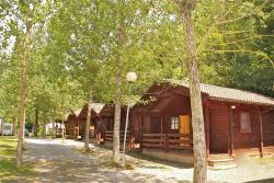 Camping Abadesses, Carretera. C-38 Km 0.4, 17860, Sant Joan de les Abadesses