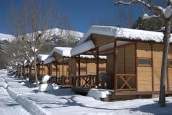 Camping L'Espelt, Carretera de Guardiola de Berguedà a la Pobla de Lillet, km, 402, 08696, La Pobla de Lillet