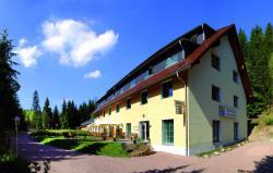 Waldhotel am Aschergraben, Teplitzer Str. 36, 01778, Geising