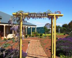 Lavendale Farmstay and Cottages York, 5895 Great Southern Highway, Gilgering , 6302, York