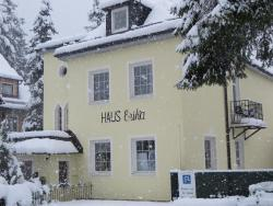 Haus Erika, Stubnerkogelstr. 40, 5640, Bad Gastein