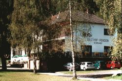 Gasthaus-Pension Waldesruhe, Schwarzbach 36, 67471, Schwarzbach