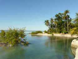 Lagoon Breeze Lodge, Abarao, Bairiki, Tarawa, 000, Eita