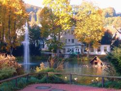 Parkhotel Am Schwanenteich, Rosenstrasse 4, 37242, Bad Sooden-Allendorf