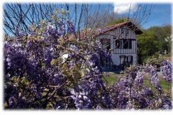 Maison d'Hôtes Uhaldia, Route d'Hasparren, 64250, Cambo-les-Bains