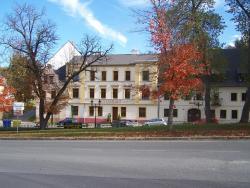 Restaurace U Muzea, Pluhova 212, 35731, Horní Slavkov