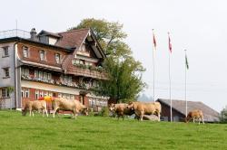 Frohwies, Wisstrasse 42, 9633, Hemberg