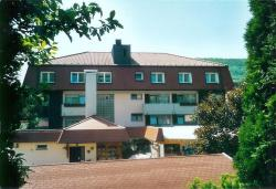 Hotel-Gasthof Hirschen, Hauptstr. 72, 78176, Blumberg