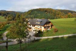 Gasthaus - Gästehaus Schusterbauer, Hörgas 49, 8103, Rein