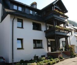Ferienwohnung Ortsmitte-Willingen, Alte Kirchstraße 12, 34508, Willingen