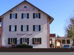 Hotel Gasthof Gaum, Bahnhofstrasse 7, 88444, Biberach-Ummendorf