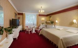 Hotel Ostrov, Na Ostrove 432/1, 28822, Nymburk