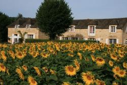 Domaine des Hirondelles, la Gare / Le Coustaty, 24220, Saint-Vincent-de-Cosse