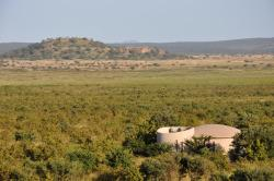 Ecoscience Luxury Lodge, Tarangire National Park, Arusha, 2494, Kwa Kuchinia