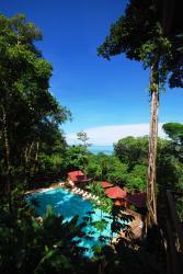 Mar y Selva Ecolodge, 500 Metros Sur, 1200 metros este del Km. 170 Costanera Sur, Bahia Ballena, 50906, Ballena