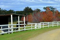 The Oaks Ranch And Country Club, 238 Old Mossy Point Road, 2536, Jeremadra