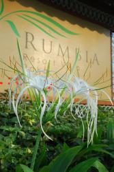 Rumbia Resort Villa Paka, Lot 3573, Mukim Kuala Paka, Dungun Terengganu, 23100, Paka
