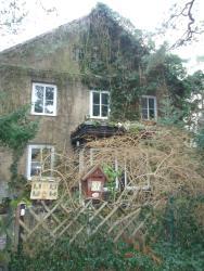 Zimmervermietung Kostka, Ebertallee 87, 06846, Dessau