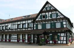 Hotel Landgasthof Blume, Landstraße 18, 77839, Lichtenau