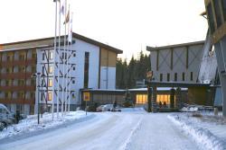 All Ice Lapland Chalets I, Iso-Ylläksentie 42, 95980, Ylläsjärvi
