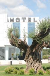 Hotel Duomo, Carretera Nacional, 340, Km 883, 46450, Benifayó