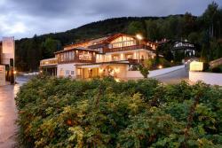 Villa am See - Schwingshackl ESSKULTUR, Schwaighofstr. 53-55, 83684, Tegernsee