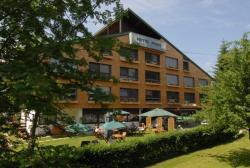 Hotel Park, Speckbacherstraße 45, 6380, Sankt Johann in Tirol