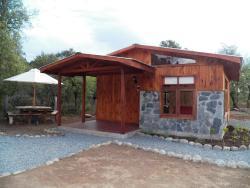 Turismo Curalemu, Ruta Q-45, km. 55, 4490000, Antuco