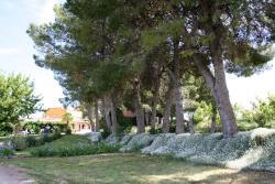 Casa Rural Cal Dalfó, Ctra Alfarràs Partida Coma Estreta, km 12, 25126, Almenar