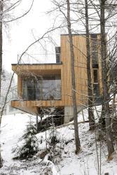Apartment Managers - Stylebox 1, 2, Haarpointweg 27, 6365, Kirchberg in Tirol