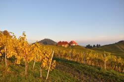 Weingut Kögl, Ratsch 59, 8461, Ratsch an der Weinstraße