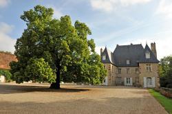 Château du Riau, Château du Riau, 03460, Villeneuve-sur-Allier