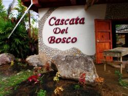 Cascata Del Bosco Cabinas, 200 meters north of Wilson Botanical Gardens, 60801, San Vito