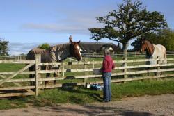 Strete Ralegh Farm, Whimple, EX5 2PP, Whimple
