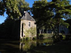 Château de la Cour - Logis St Bômer, Château de la Cour, 53600, Sainte-Gemmes-le-Robert
