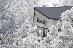 Absollut, Hotham Heights, Great Alpine Road, 3741, Mount Hotham