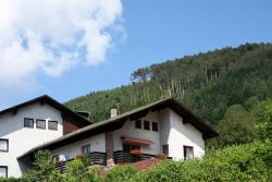 Ferienwohnungen Schwarzwald Panorama, Uhlandstrasse 40, 75323, Bad Wildbad
