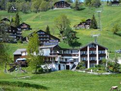 Hotel Restaurant Cristal, Hüttenbergstrasse 6, 8784, Braunwald