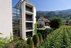Hotel Schatzmann, Landstrasse 80, 9495, Triesen