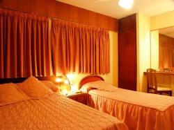 Hotel Torino, Av. Savio 279, 2900, San Nicolás de los Arroyos