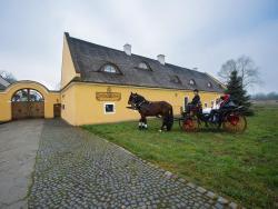 Dvůr Olšiny -Hotel and Horse-riding, Olšiny 59/17, 73301, Karviná