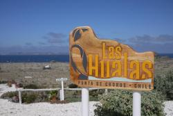 Las Hualas, P.O.Box #693 Punta de Choros, 1700000, Punta de Choros