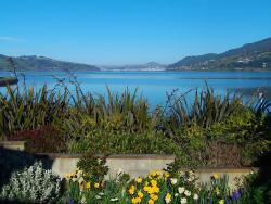Arts Content Bed and Breakfast, 1 Castlewood Road, Company Bay, Otago Peninsula, 9014, Macandrew Bay