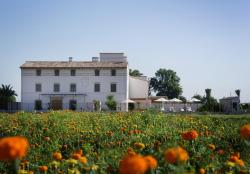 La Mozaira, Cami Del Machistre, 50, 46120, Alboraya