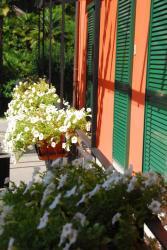 Ristorante Charme Hotel T3e Terre, Via Vecchia Stazione 2, 6652, Ponte Brolla